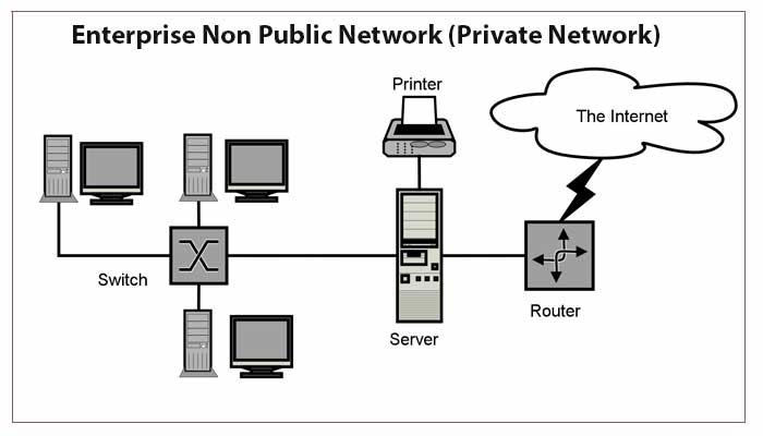 Enterprise Non Public Network (Private Network)
