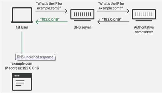 Domain Name Server cache Response